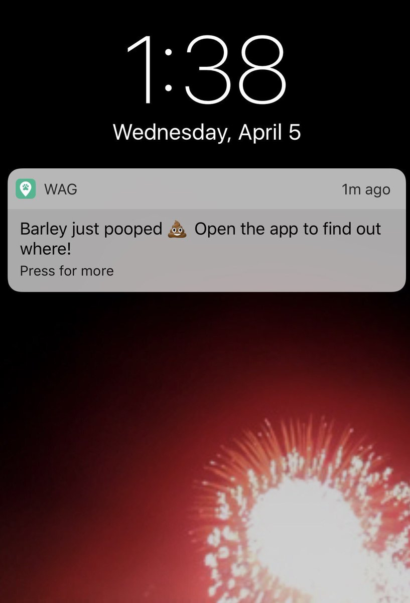 Our dog walking app takes notifications to the next level. https://t.co/RgKf7GPK2v