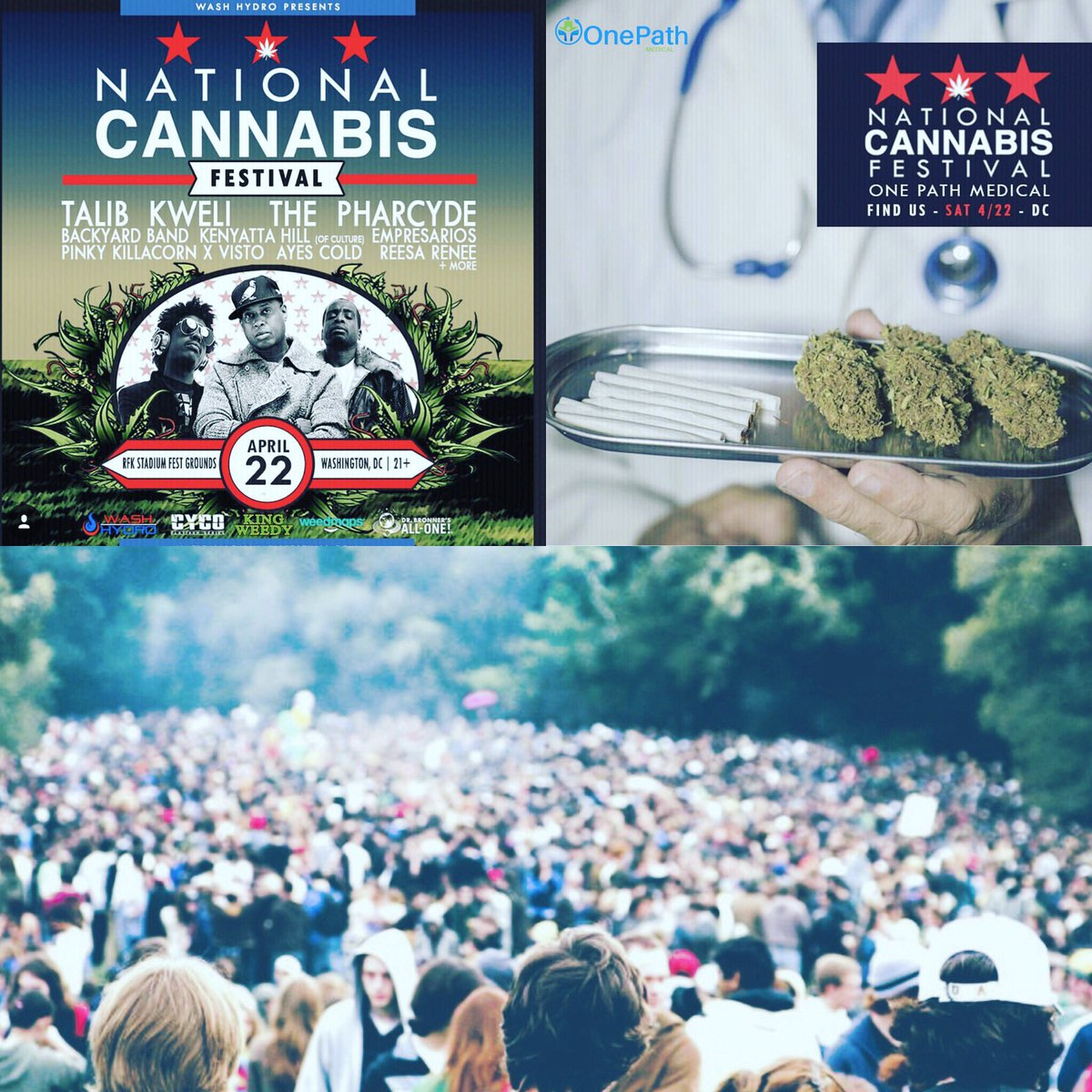 nationalcannabisfestival hashtag on twitter