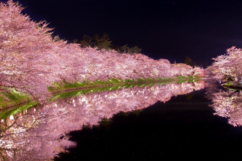 桜咲く日本の景色w美しすぎて近所の桜がただの花にしか思えないwww