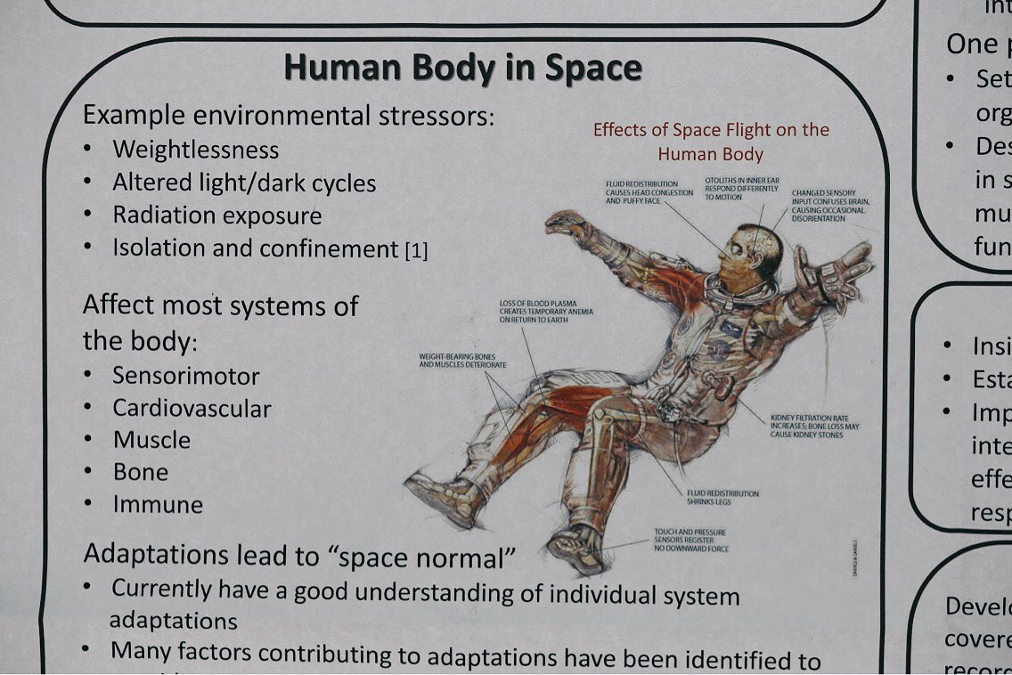 Spaceathopkins On Twitter The Spaceathopkins Social Hour At Hopkinsmedicine Was A Chance For Researchers To Share Ideas On The Effects Of Space Travel On Humans Https T Co G5cebxntvp