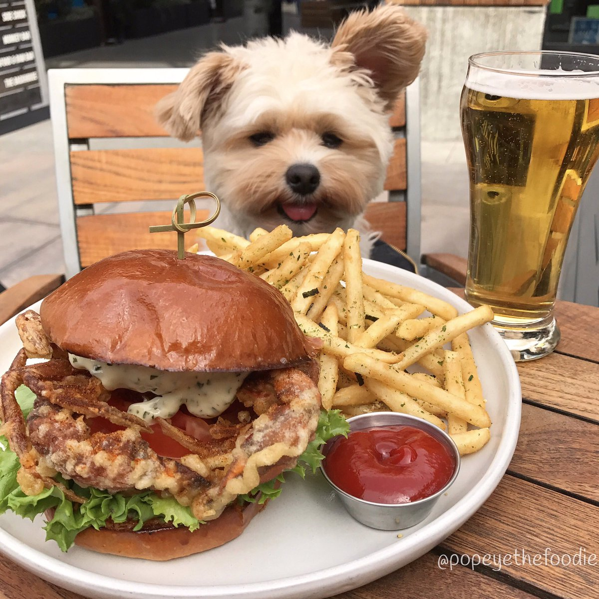 Popeye The Foodie On Twitter The Love For Fries Is Real The Soft Shell Crab Sandwich Fries And Beer At Monkey Bar In Westfieldsantaanita Arcadia Https T Co Kbiywpakiz