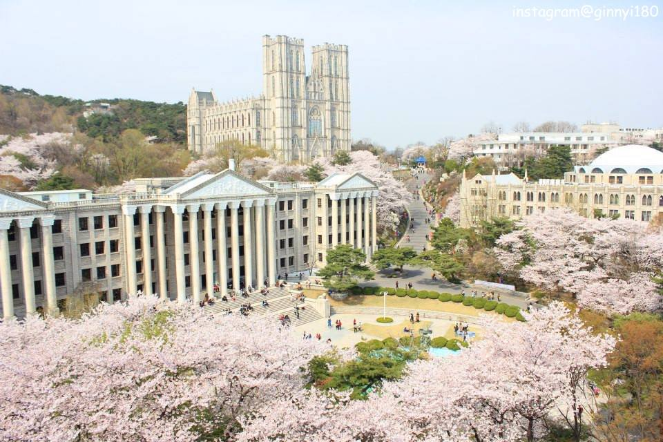 「キョンヒ大学」の画像検索結果