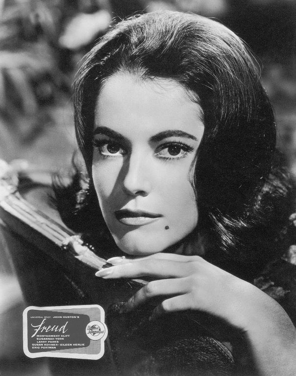 Image result for susan kohner