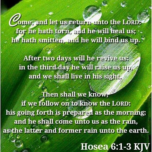 Bible Verses KJV on Twitter: