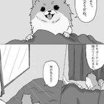 Twitterすごいな……!「CV大塚明夫のポメラニアンが欲しい」という願望ツイート→Twitter…