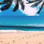 Loving beach life 🌴 beach stories