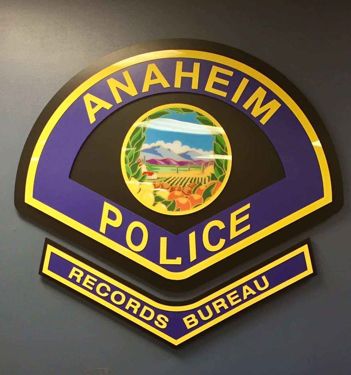 anaheim pd on applications being accepted for police anaheim pd on applications being accepted for police records supervisor 1st application deadline 4 28 17 at 5 00pm more info at