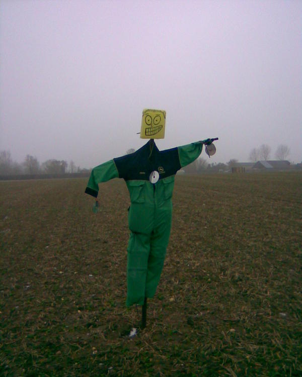 Great East Anglian scarecrows I have met: part one. #folklorethursday...