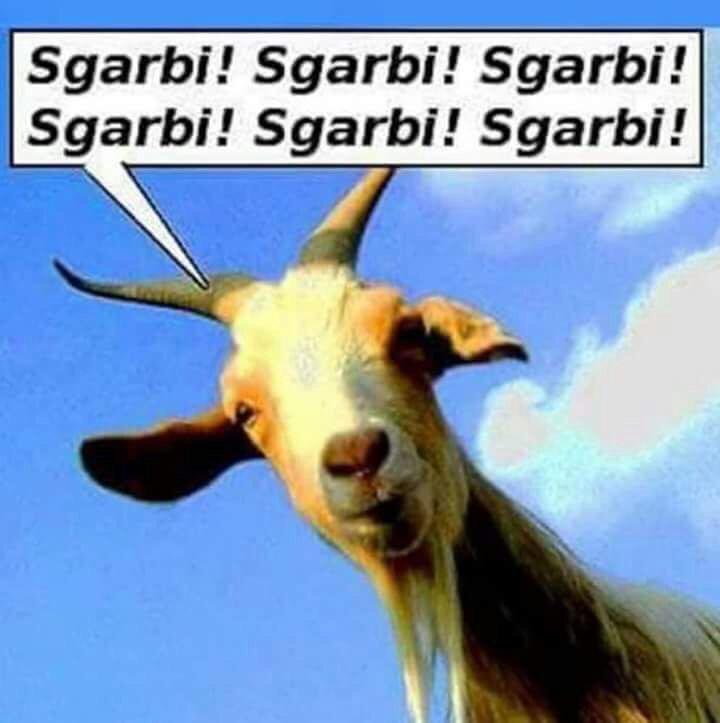 una capra grida: Sgarrbi! Sgarrbi! Sgarrbi!