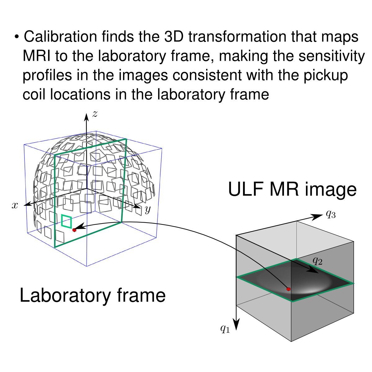 @abc_aalto @k7hoven (4) After calibration, MRI and MEG are in the same coordinate system. Minor nonlinear image distortions can be detected, too. #brainTC https://t.co/G0edK3kiA7