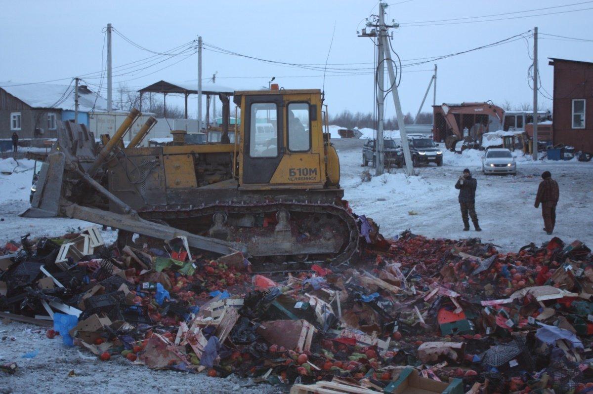 23 тонны сухого молока из Финляндии раздавили бульдозером в Ленинградской области РФ - Цензор.НЕТ 454