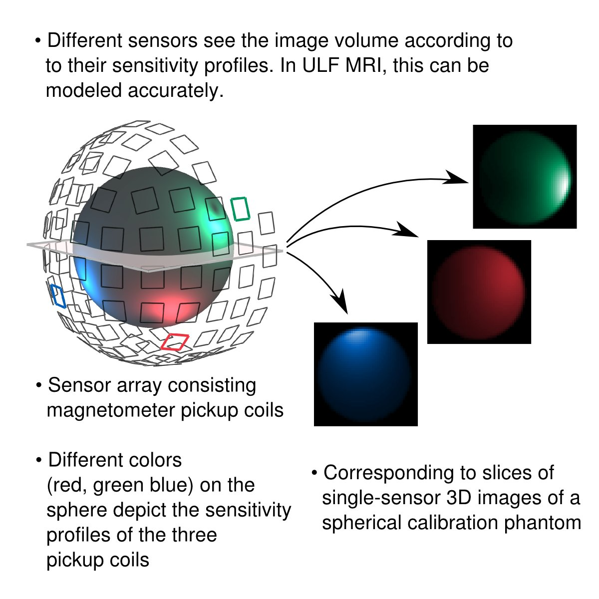 @abc_aalto @k7hoven (3) Our calibration is based on the sensitivity profiles of the magnetic sensors. The same sensors are used for both MEG and MRI. #brainTC https://t.co/C1ekfDg6Uu