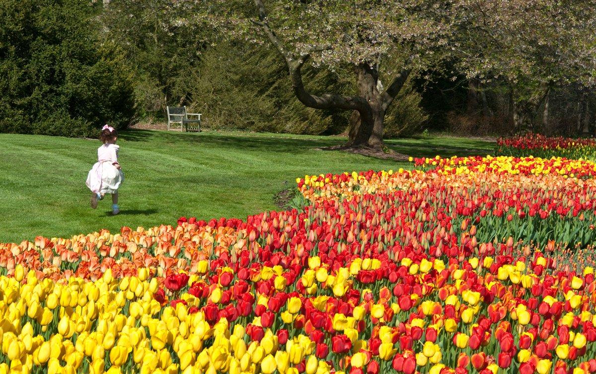 Longwood Gardens Longwoodgardens Twitter