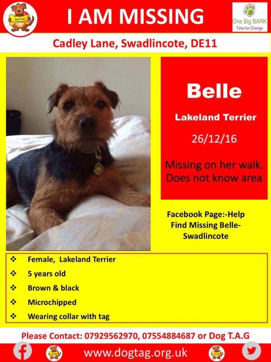 I just supported #FindBelle on @ThunderclapIt // @DogTAGMids  http:// buff.ly/2pvFdJF  &nbsp;   Plse #S&amp;S <br>http://pic.twitter.com/P1DTTDLYs1