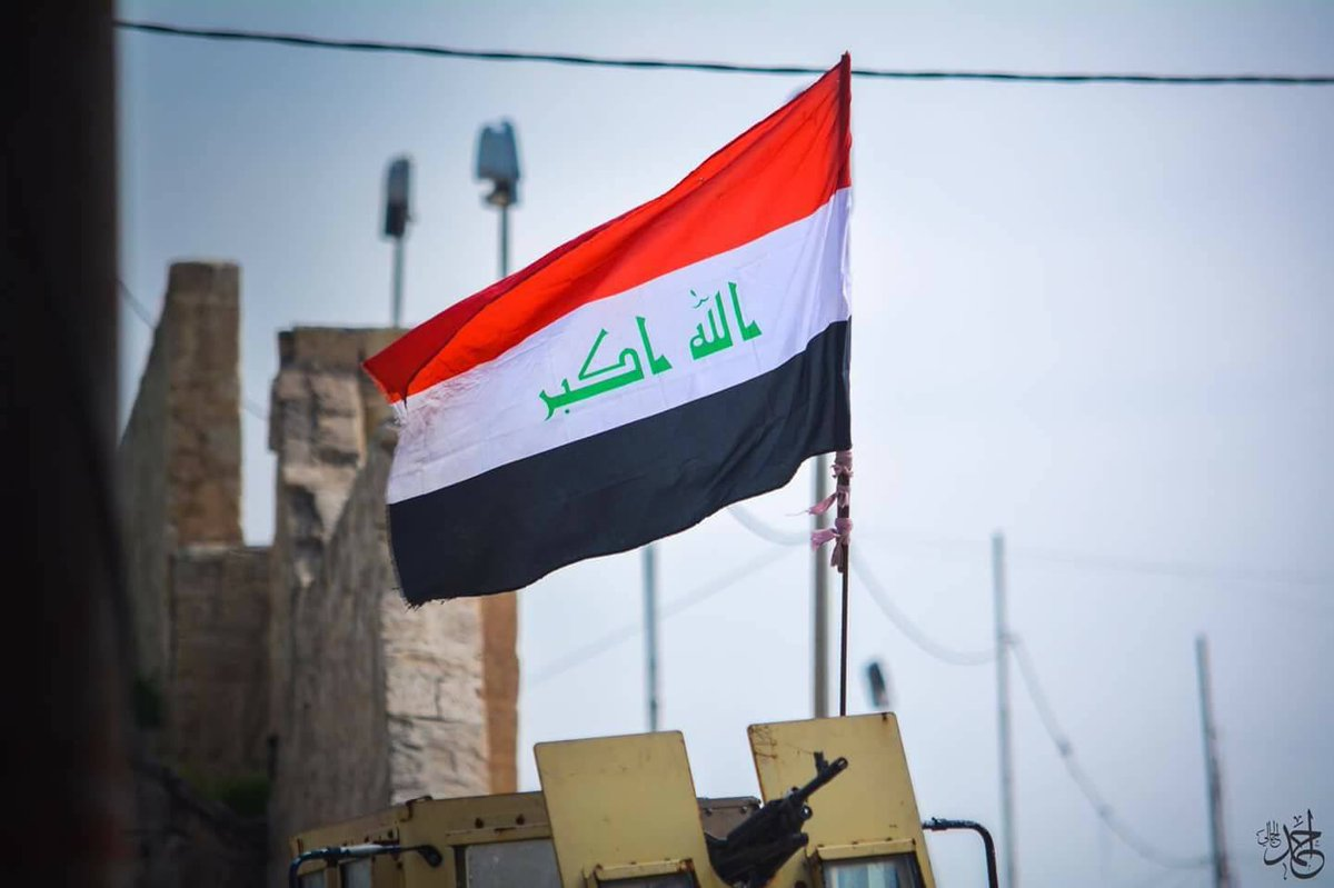 Iraq's armed forces have captured the Al-Nasr district in western Mosul.