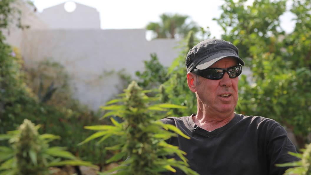 Legalising weed: A matter of life and death?