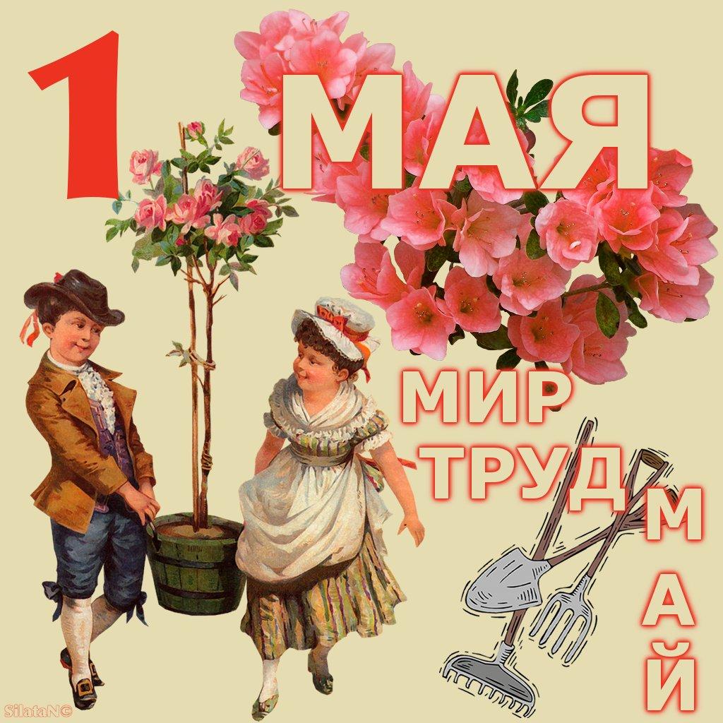 Картинки на 1 мая с надписями, нарисовать открытку день