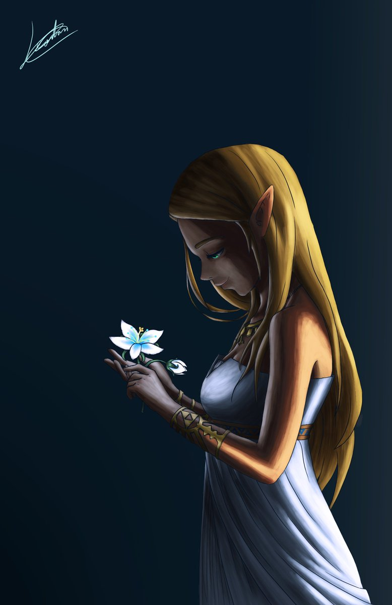 Leordan On Twitter Silent Princess Zelda Breath Of The