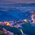 千本桜を眺めた日1、うららかな午後2、たそがれの残照3、月夜に浮かぶ先週、奈良県吉野山にて撮影。1と…