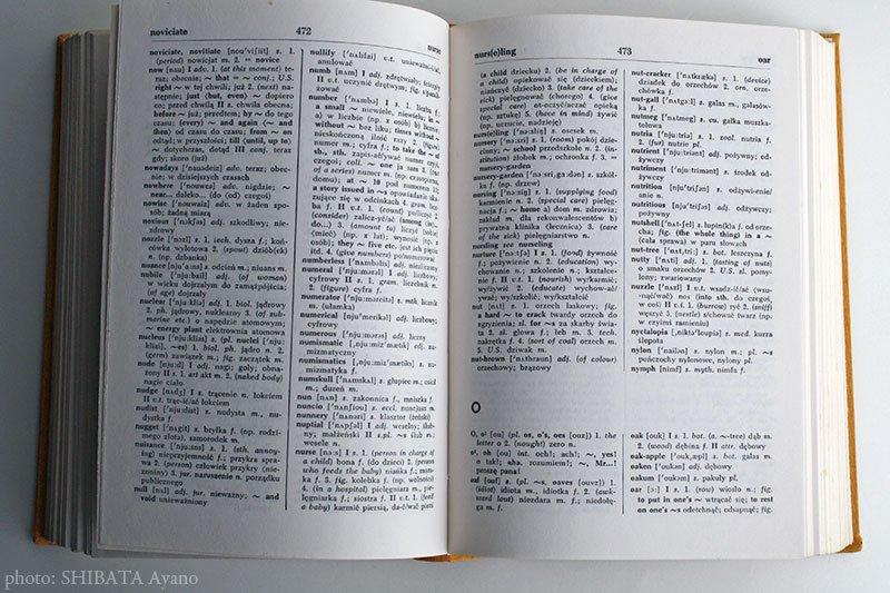 book васељенски сабори ii