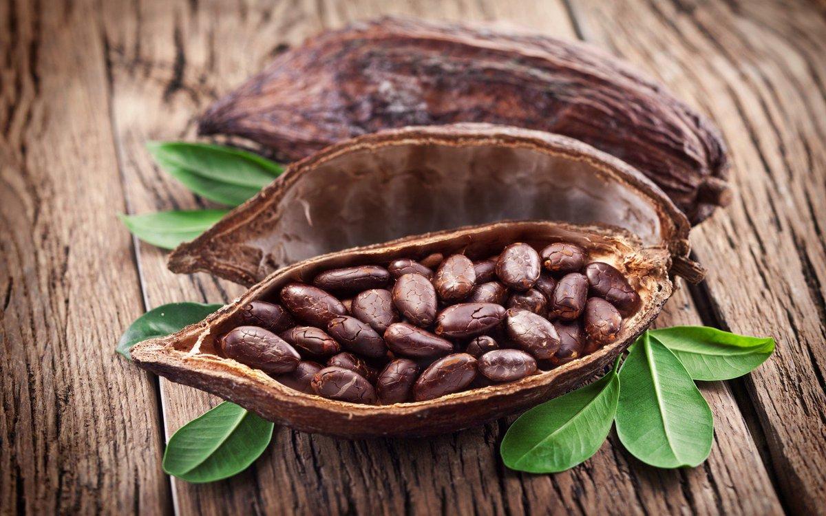 """Результат пошуку зображень за запитом """"какао бобы"""""""