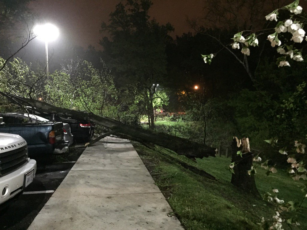 Large tree down on cars after strong #storm in #Adelphi MD. @fox5dc<br>http://pic.twitter.com/Jb5YjcoFSx