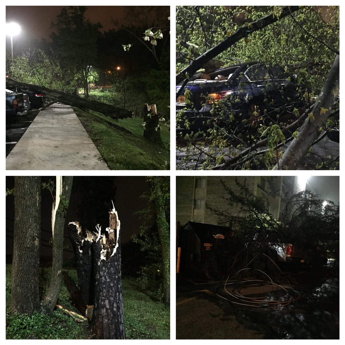 Several large trees down &amp; cars damaged on Greenspire Terrace in #Adelphi. @MikeTFox5 says radar indicated 40-50mph winds. @fox5dc<br>http://pic.twitter.com/Ih8dNSZNob