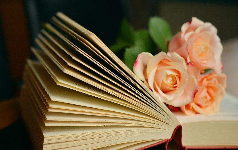 Toute la douceur d'un #VendrediLecture grâce à vous : que lisez-vous en ce moment ? pic.twitter.com/LHyeV20qFn