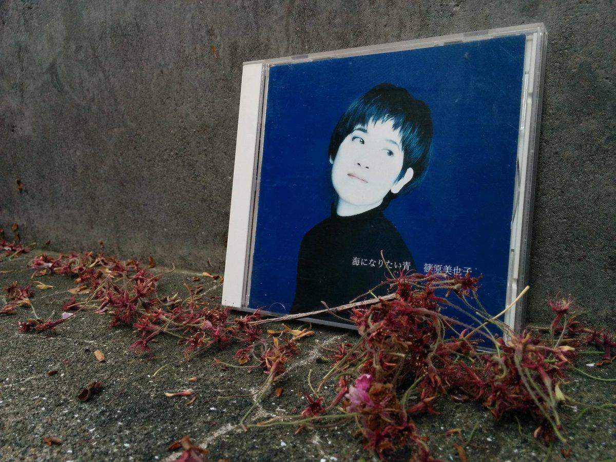 本日、シンガーソングライターとしての篠原美也子は24歳となりました。おめでとう、ありがとう、会える人は明日会いましょう! https://t.co/RXiKjNYO8d https://t.co/DQGs3G4Kq3