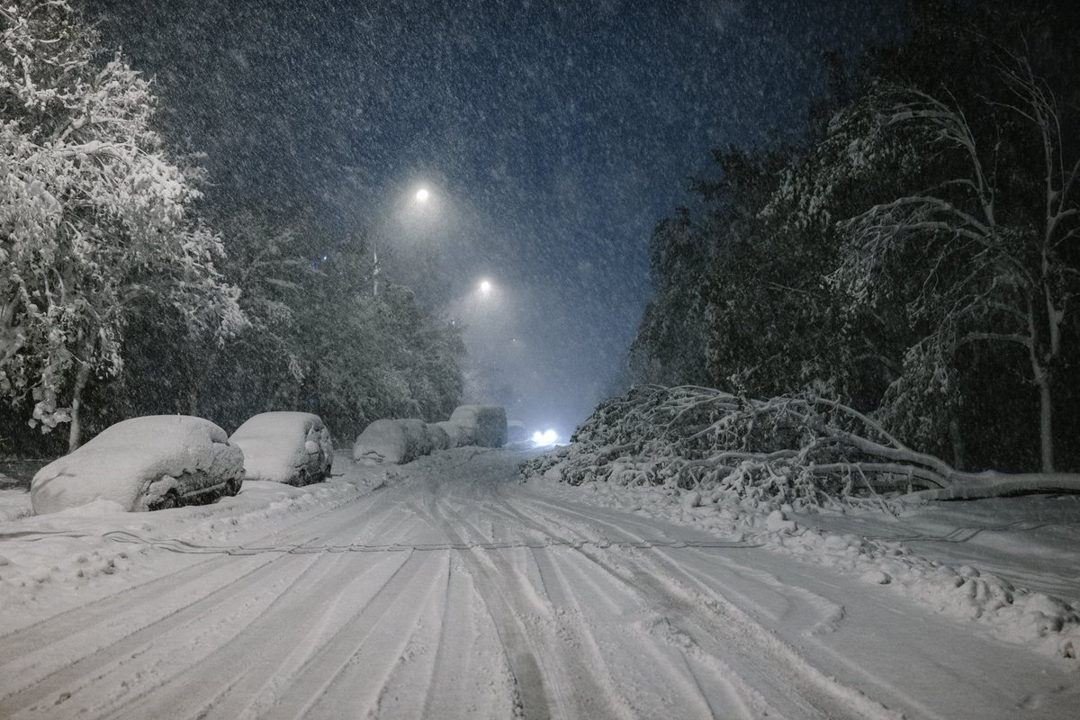 Moldova declared state of emergency as heavy snowfall blocks roads  and  probably killed this year's harvest
