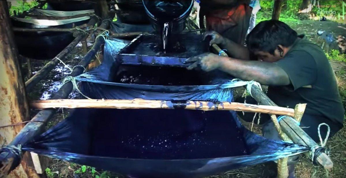 Resultado de imagen para Mira el increíble proceso de extracción del añil natural en Santiago Niltepec, Oaxaca (VIDEO)