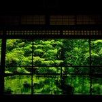 桜や紅葉の京都もいいけど、緑に包まれた京都は比較的静かに楽しめるのでオススメ。 pic.twitte…