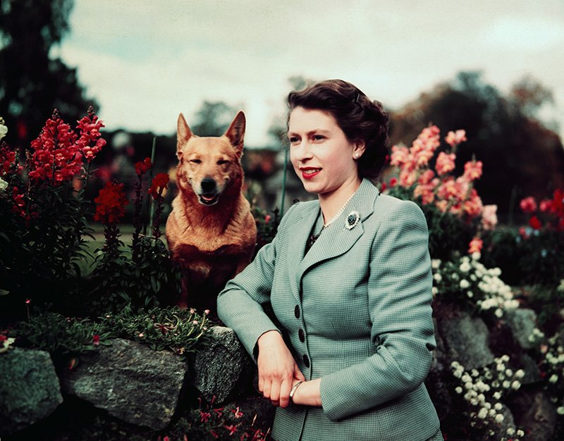 Queen Elizabeth turns 91 today. View photos of her as a young royal  http:// to.pbs.org/2pZfuWv  &nbsp;   #queensbirthday <br>http://pic.twitter.com/DvbLTm3eN9