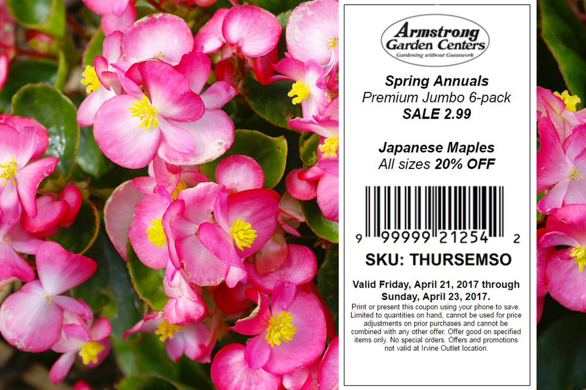Armstrong gardens on twitter this weekend save on spring annual armstrong gardens on twitter this weekend save on spring annual flowers and japanese maples with this coupon spring garden savings sale izmirmasajfo