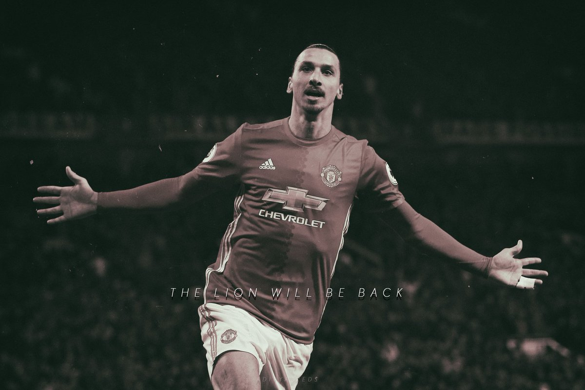 The lion will be back #GetWellSoon #Zlatan #mufc #TheLion<br>http://pic.twitter.com/bDdYlLaasv