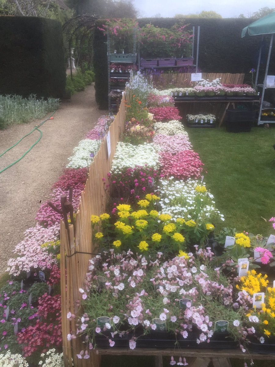 RT @PKDavisNursery Full of colour @LoseleyPark come and find us #GreenFingers #loseleypark #gardenshow #weekend #alpines #perennials