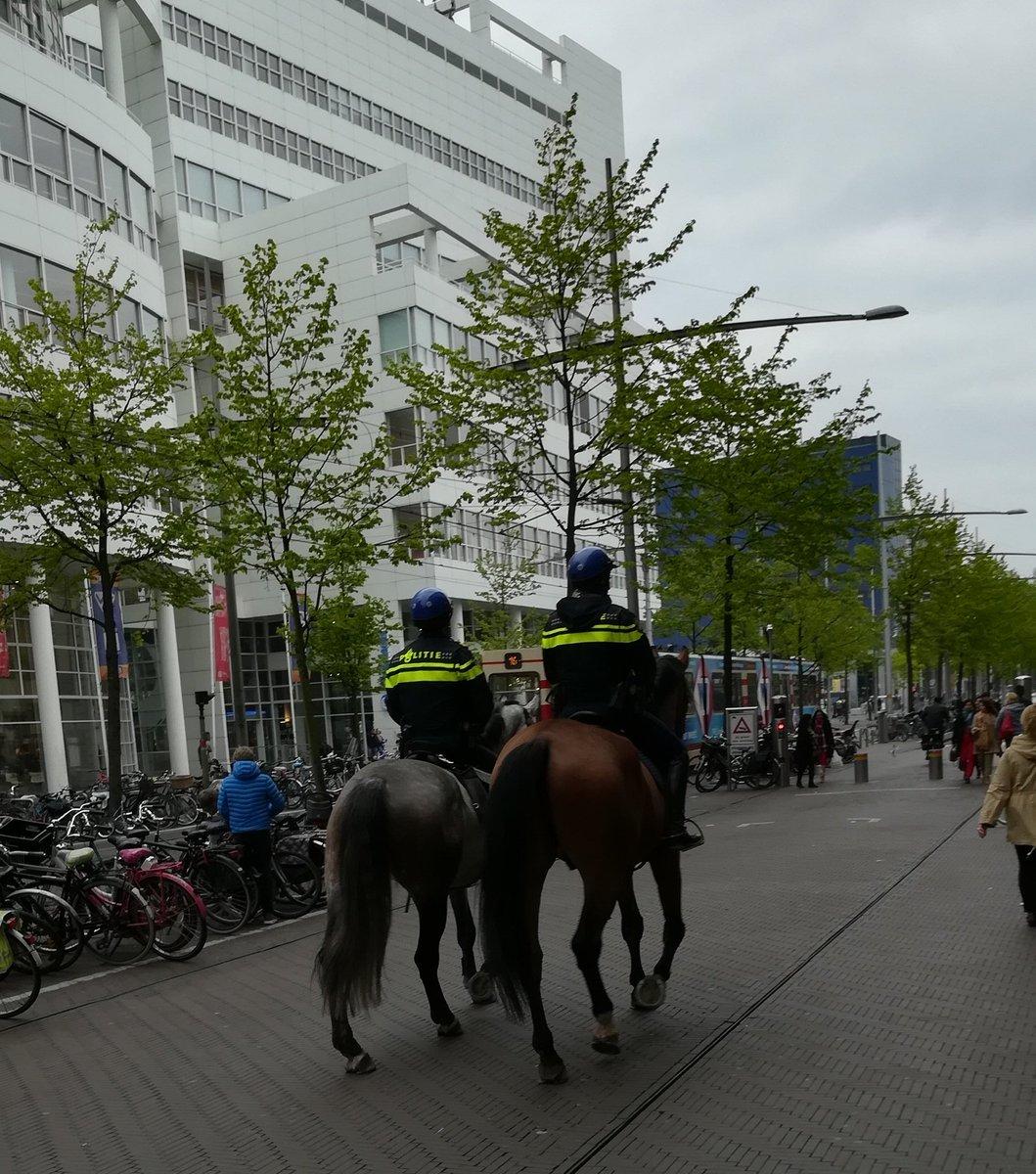 Police dogs https://t.co/yCcqTpXQ5P