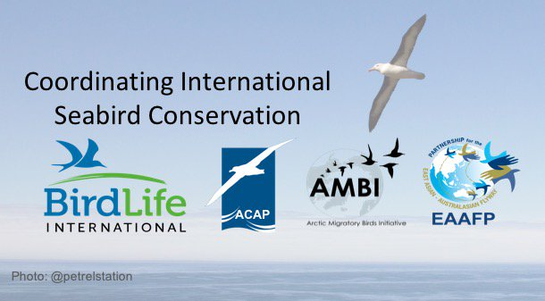 4 #WSTC3 Results will facilitate the coordination of #conservation actions across international borders (e.g., by @EAAFP, Birdlife, AMBI). https://t.co/tVesjD6mGV