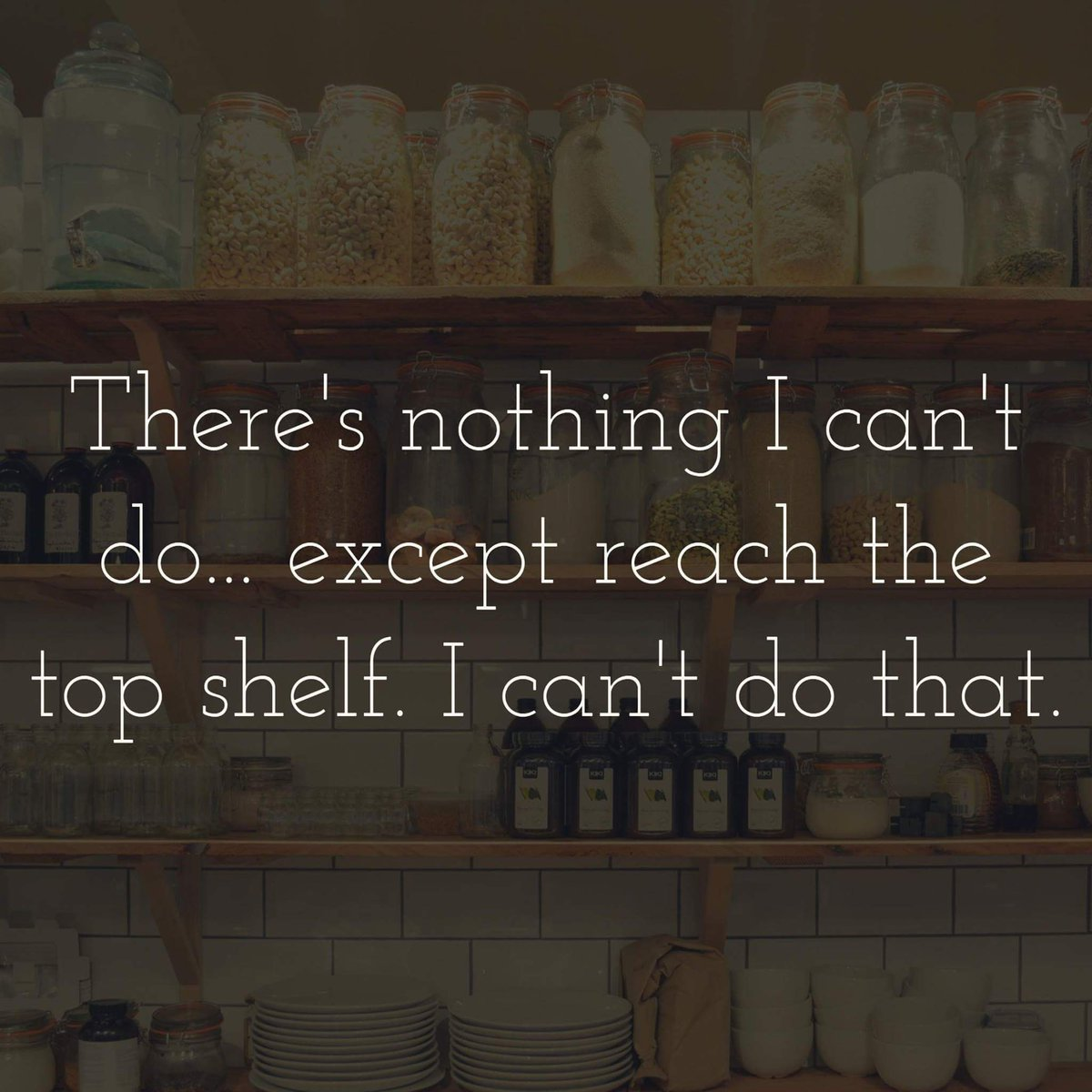 Image result for there is nothing i can't do ... except reach the top shelf