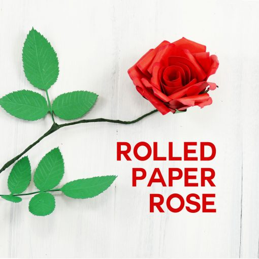 Rolled Paper Rose Tutorial