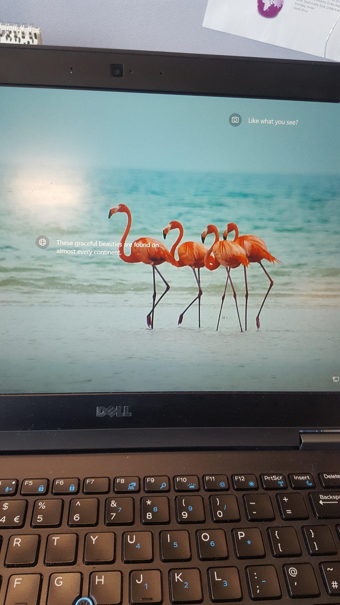 RT @NicCee1: Even my laptop knows what time it is! T - 2 days! #amplostandfound @AnnieMac @AMPlostandfound https://t.co/0SBPP0Ajz2