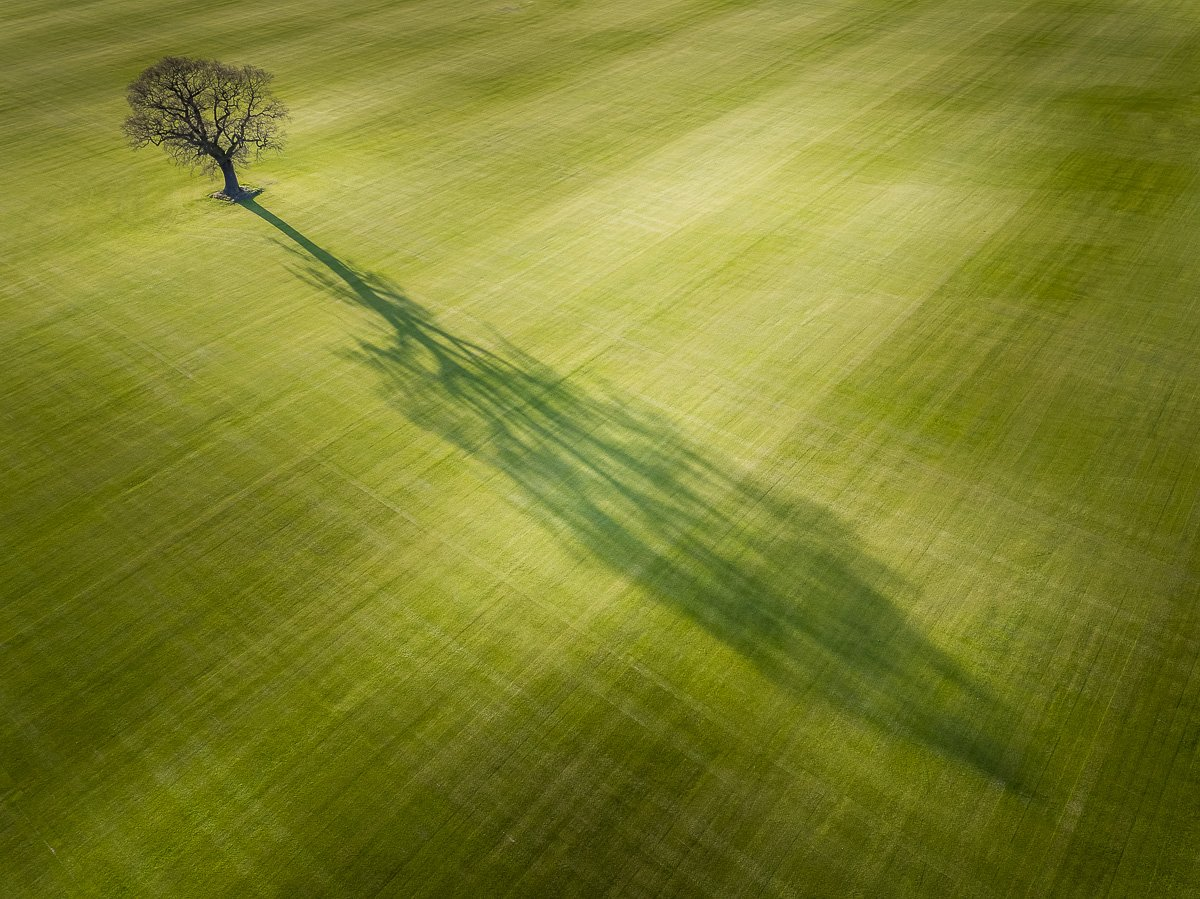 Lots of aerials this week! @David_Hopley impresses with this fabulous composition #WexMondays https://t.co/bE3mkItJG5