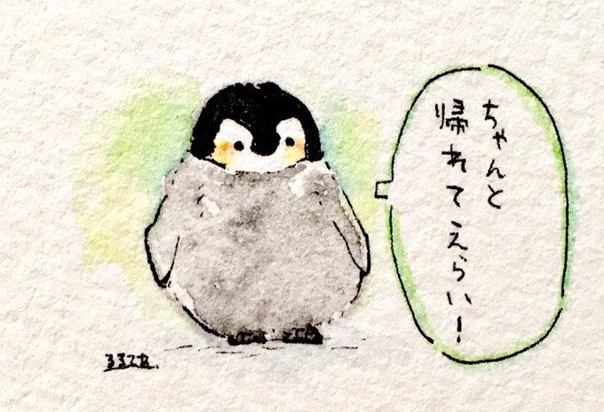 肯定ペンギンのあかちゃん Togetter