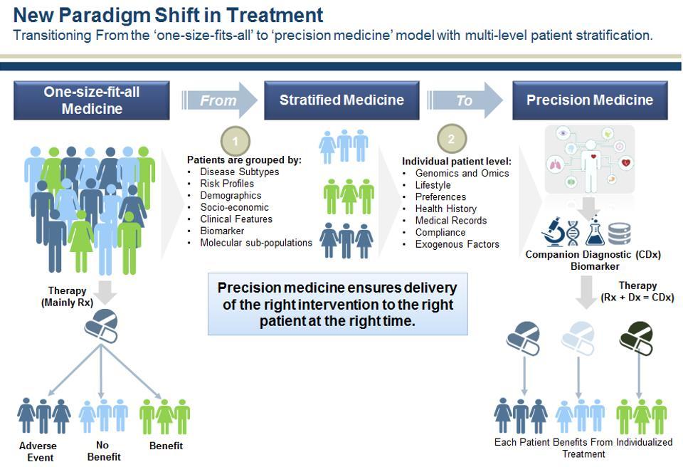 socio medical model