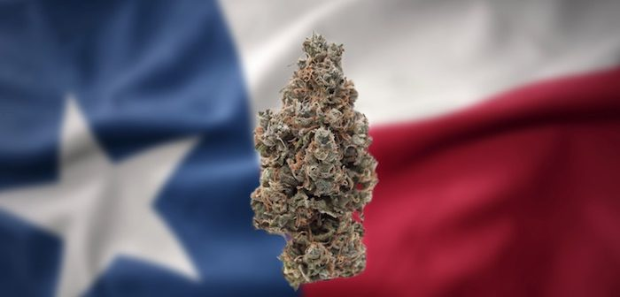 Texas Decriminalization Cultivated By County and State