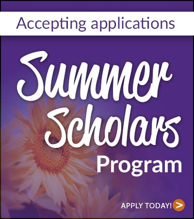 Summer Scholars program - BCI