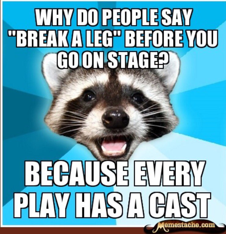 Image result for lame pun coon