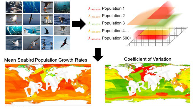 3 #WSTC3 The Objective: An analysis of pop trends & a spatial model of how #seabird pops have changed over the past 65 years, globally. https://t.co/HlP7FXLgoJ