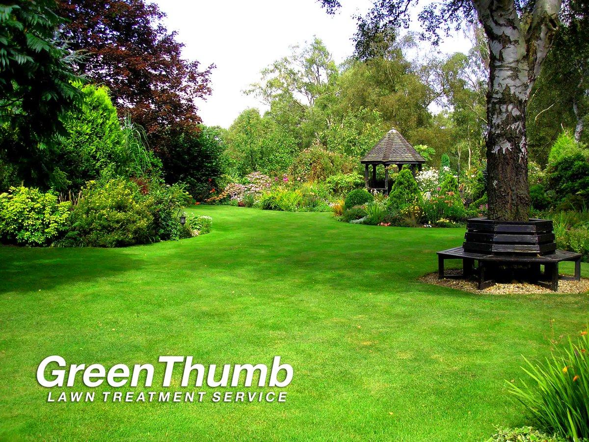 greenthumb lawn care greenthumblawns twitter 0 replies 1 retweet 2 likes