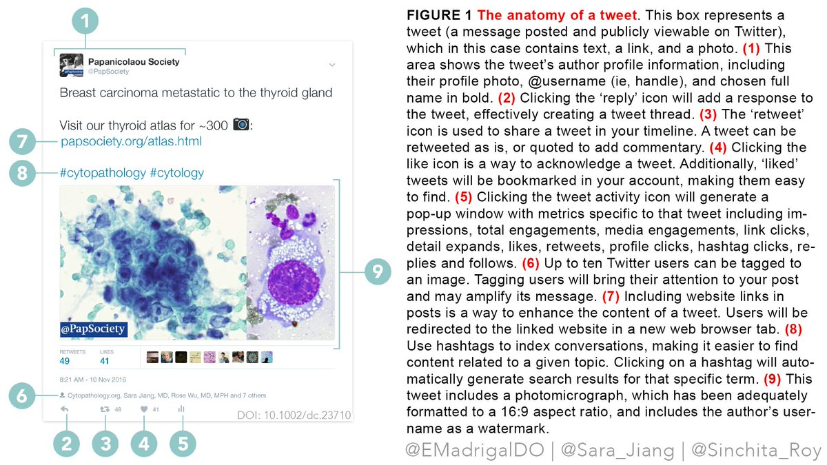 Emilio Madrigal Do On Twitter Figure 1 Anatomy Of A Tweet From